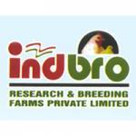 indbro-Logo